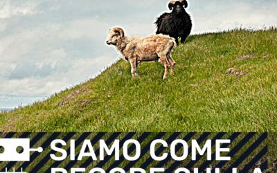 INNOVATORI DIGITALI | E4 – Siamo come pecore sulla collina